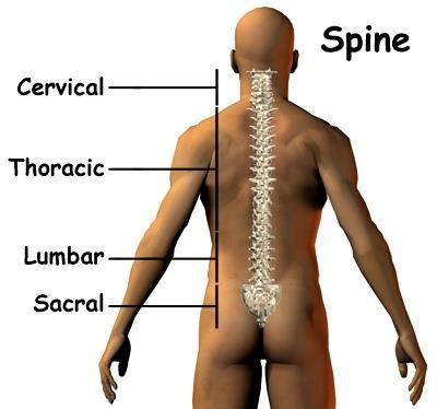 New Class for your spine